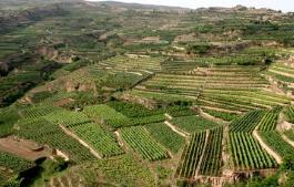 淄博市国土资源局对6个镇的土地问题挂牌督办