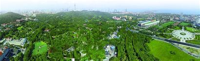 """建设北部绿色生态屏障七大工程确保""""绿满青岛"""""""