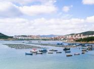 威海市与水发集团签订战略合作框架协议