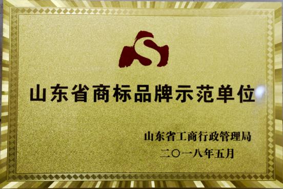 品牌创新标杆 雷丁获山东省商标品牌示范单位奖275