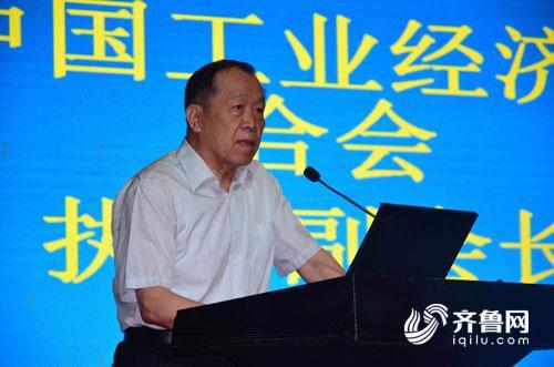 中国工业经济联合会执行副会长路耀华致辞.jpg