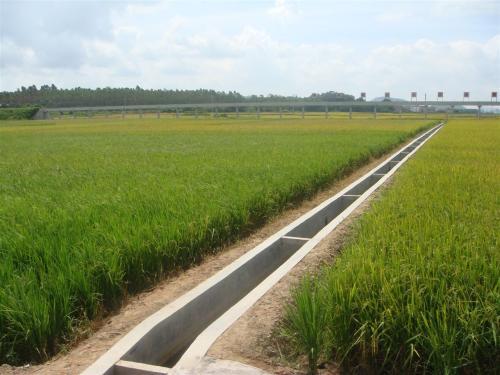 """投资1.89亿!今年聊城再次实现""""小农水""""项目全覆盖"""