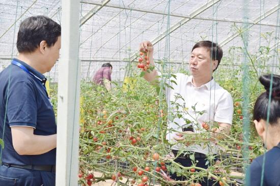 """淄博市农业局邀您把关""""舌尖上""""的农产品安全"""