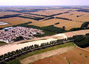 黄河两岸麦田万顷 风景美丽等待大丰收