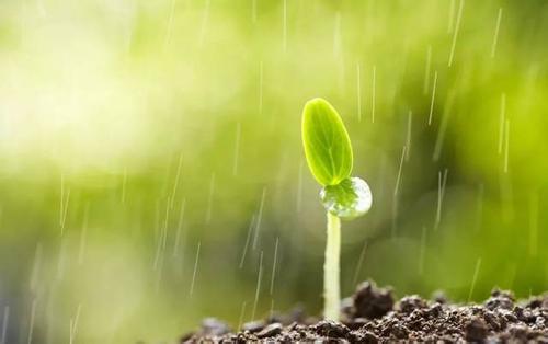 聊城5月降水比历年同期多近九成全市平均降水量76.3毫米