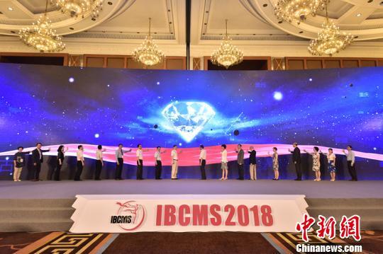 首届国际乳腺肿瘤多学科峰会在蓉举行