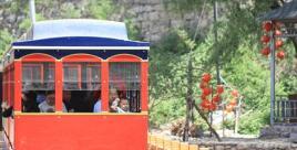 村集体收入曾是零的淄川贫困村 去年分红48.5万