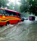 淄博今年降水比去年同期偏多58%