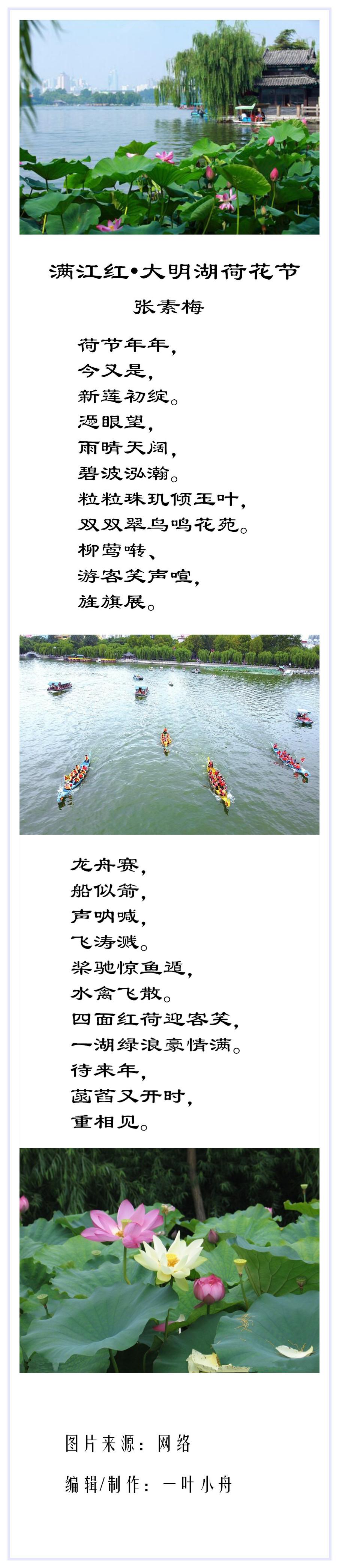 大明湖荷花节诗合成