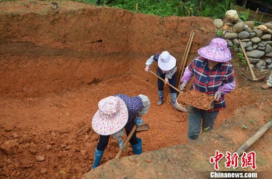 """广西凌云首次发掘一""""旧石器时代遗址"""" 出土石制品"""