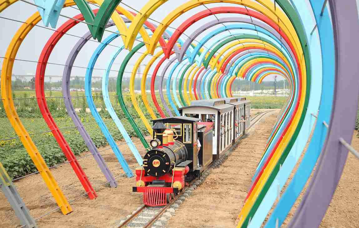 """滨州穿越""""爱情隧道""""小火车走红 引游客争相体验"""