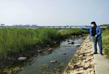 临沂滨河景区灭蚊除蝇清洁环境