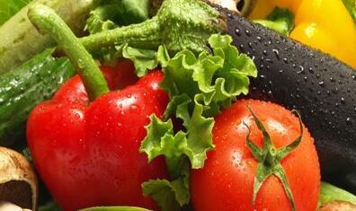聊城每天直供京沪蔬菜超54万斤 认定15处蔬菜外延基地