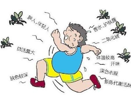 为什么蚊子总喜欢亲你?招蚊子体质大揭秘
