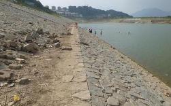淄博市黄河防洪预案发布 确保大堤不决口