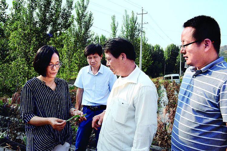 市科技局举办农业实用技术科技扶贫培训班——技术专家话农事
