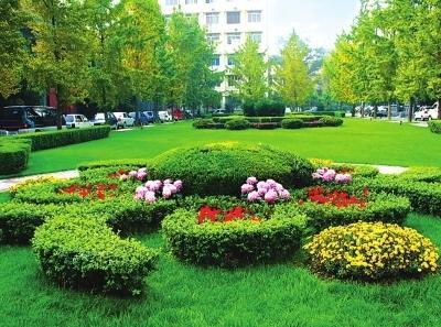 济南:地下设施顶面绿化低于0.3米,不算绿地面积