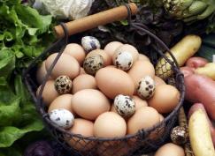 淄博菜价持续下跌 鸡蛋价格回落