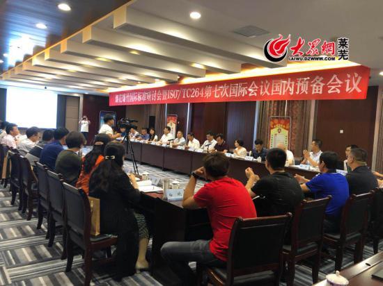 烟花爆竹行业专家齐聚莱芜 研讨国际标准