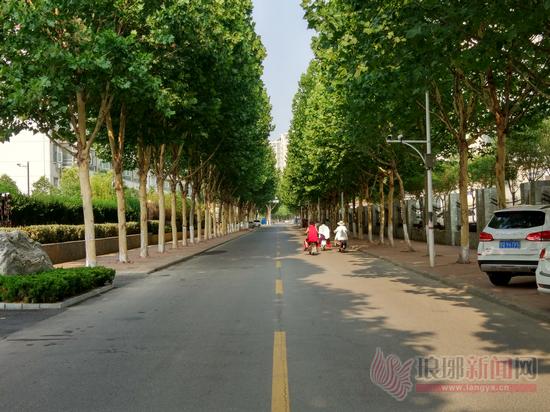 """颜值街巷让临沂更美丽 更多街巷加入到""""最美""""行列"""