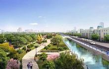 淄博东猪龙河绿化景观工程8月动工 新建7座桥梁9处景观钢坝