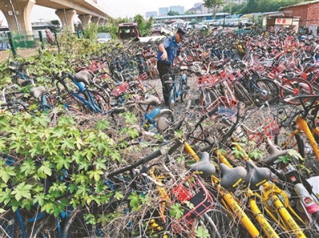 车满为患!北京一停车场堆积3000辆被扣共享单车无人认领