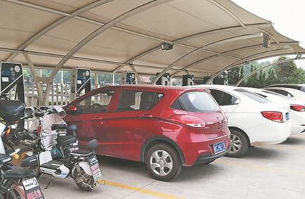 淄博一市民车位被占 充电桩近在眼前没法用