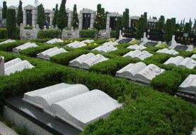 淄博启动殡葬领域专项整治行动 12类违法违规行为是重点