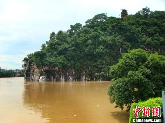 桂林强降雨 漓江排筏全线封航