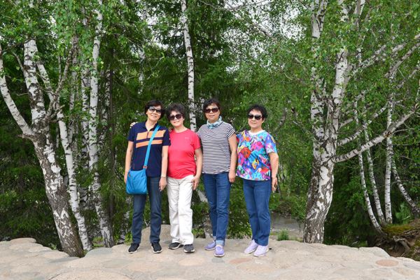 33  禾木村旁的白桦林
