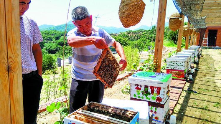 工匠精神铸就中国好蜂蜜