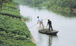 桓台县设置17名民间河(湖)长