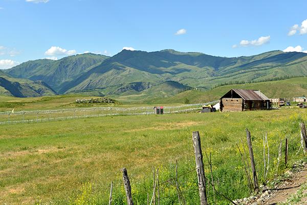 12  白哈巴村外,我国与哈萨克斯坦的边境线