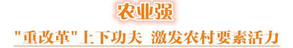 """用都市农业优势补短板 济南下活""""乡村振兴""""棋"""