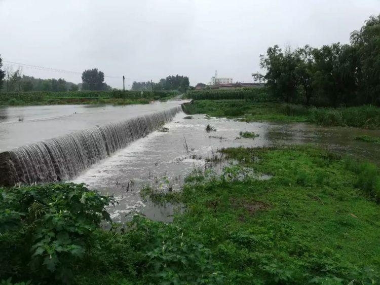 一场强降雨 青岛23座大中型水库进水近300万方(图)
