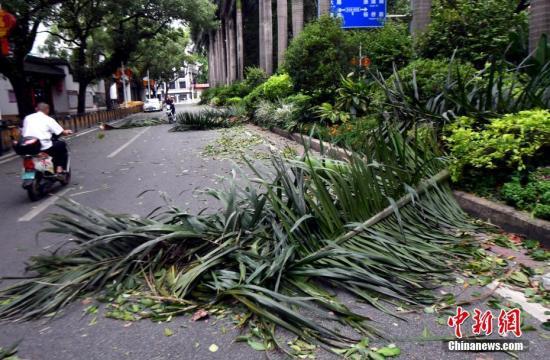 """台风""""玛莉亚""""登陆福建连江 海陆空交通全面受阻"""
