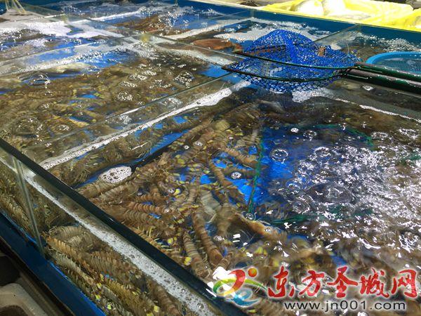 一年中吃虾最划算的季节来了