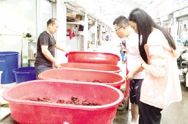 潍坊:小龙虾卖得特火 价格比去年同期略贵