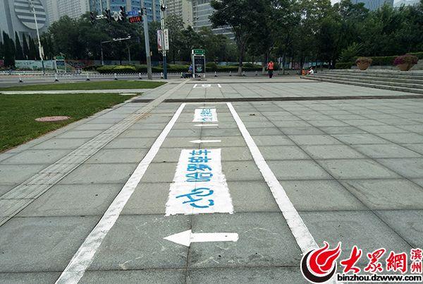市民反映哈罗单车数量减少 滨州负责人:多停在隐蔽地