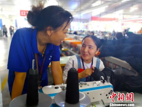 2012年新疆就业人口_今年新疆纺织服装产业力争新增就业10万人