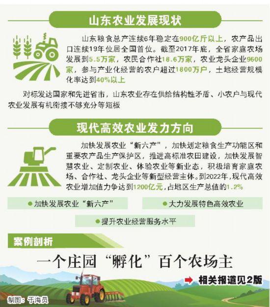 """山东新旧动能转换""""十强""""产业解析:让传统农业变身强农富民产业"""