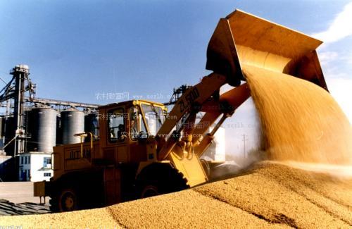 淄博支持粮食企业构建从田间到餐桌全产业链