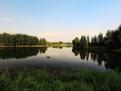 淄博文昌湖旅游度假区80.7亩土地拍得1.6亿元