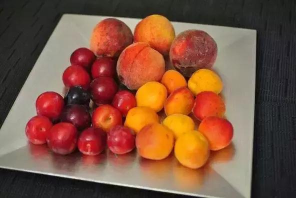 吃桃养人,吃杏伤人,这种说法科学吗?