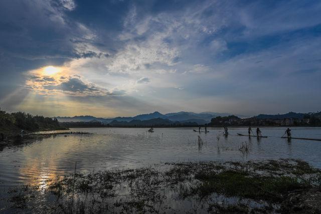 8月2日,淳安县汾口镇红星村的渔民乘着竹排,在千岛湖的支流武强溪上