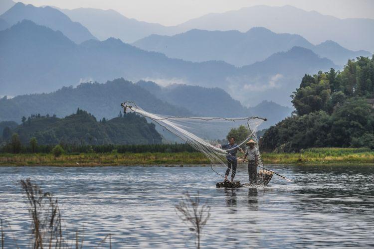 8月2日,淳安县汾口镇红星村的渔民捕捞结束后,在千岛湖的支流武强溪