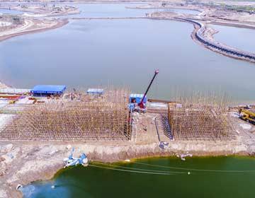 北海黄河故道湿地修复绘就北海生态美卷