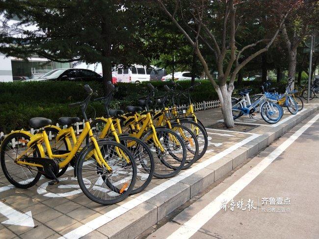 淄博共享单车总量减少一半多 实现数字化监控