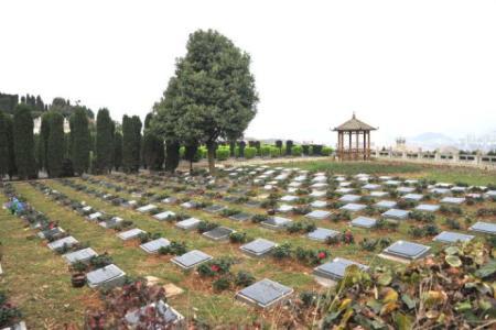 聊城全面推行惠民殡葬政策:免除4项基本殡葬费