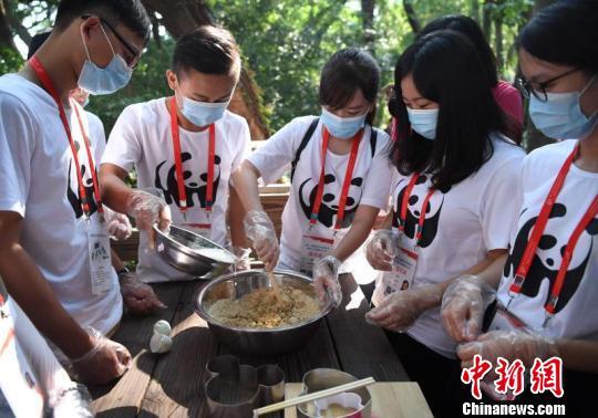 """两岸大学生齐聚福州 学做大熊猫""""窝窝头"""""""
